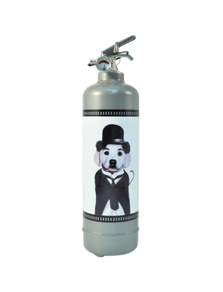 Fire extinguisher design Pets Rock Cinema grey