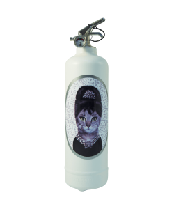 Fire extinguisher design Pets Rock Breakfast Class