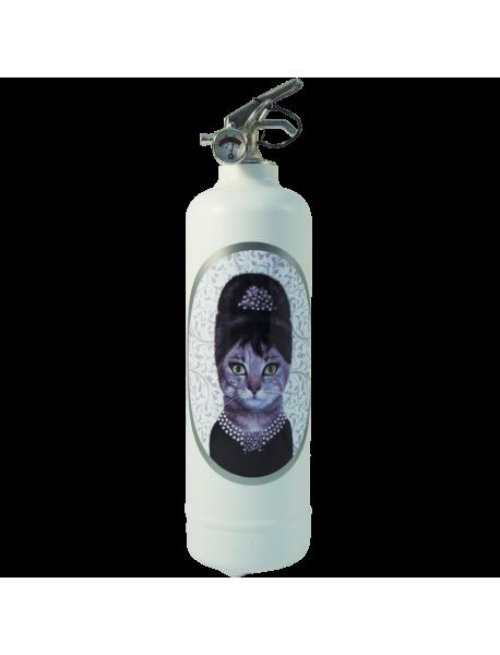 Fire extinguisher design Pets Rock Breakfast Class