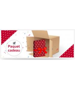 Colis Paquet Cadeau